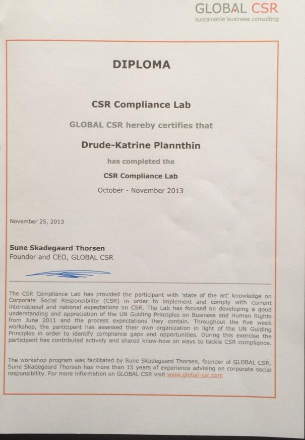 global-csr